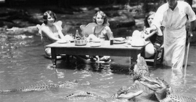Dziwna rozrywka z przeszłości: piknik wśród aligatorów