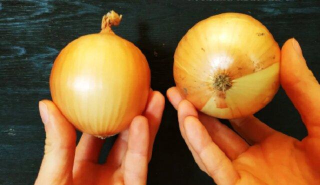 Jak posiekać cebulę cieniutko i równiutko bez dodatkowych narzędzi? Zobacz