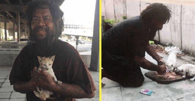 Bezdomny mężczyzna często głoduje, ale codziennie karmi koty bezdomne