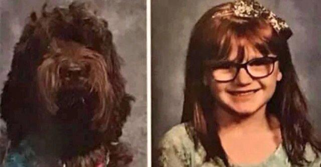 Pies pomocnik uhonorowany na zdjęciu w roczniku obok swojego ulubionego człowieka. Zobacz dlaczego