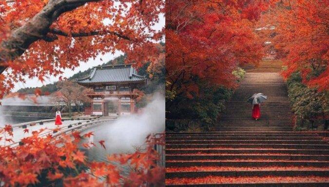 Urzekająca jesienna fotografia krajobrazowa Hiroki Nose