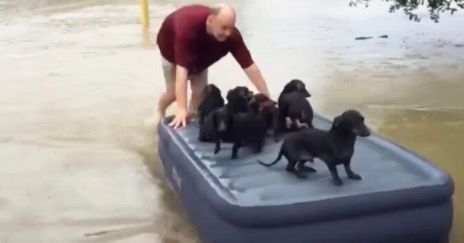 Zamiast ratować swój majątek przed powodzią, on zabrał ze sobą szczenięta sąsiada