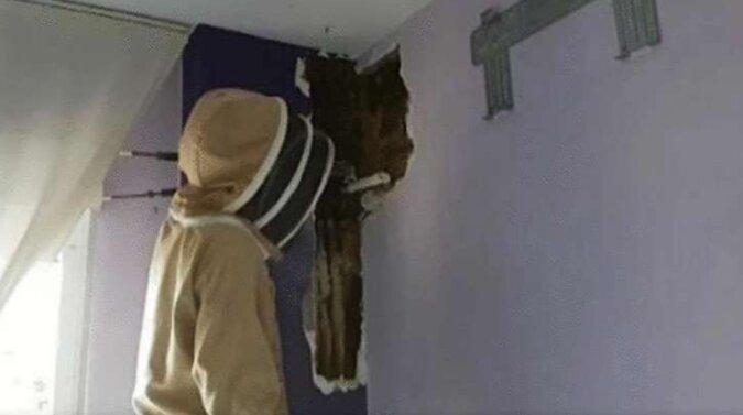 Mąż i żona znosili hałas za ścianą przez dwa lata, ale pewnego dnia nie mogli już więcej tego wytrzymać i postanowili ją wyburzyć