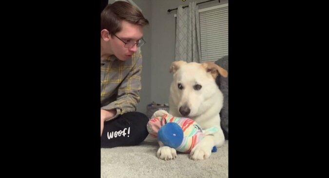 """""""Co powiedziałeś?"""": W pewnym momencie gry właściciel zaszczekał na psa. Wszystko zostało nagrane"""