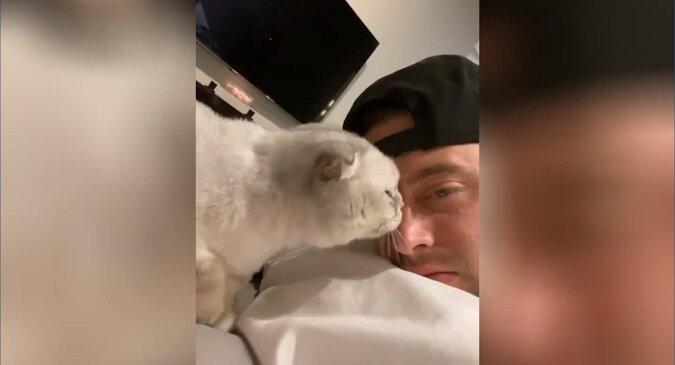 Facet postanowił liznąć kochającego kota - zabawna reakcja zwierzaka w nagraniu