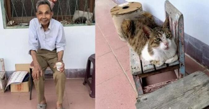 97-letni dziadek potajemnie opuścił dom, ale jego kotka nie zostawiła właściciela