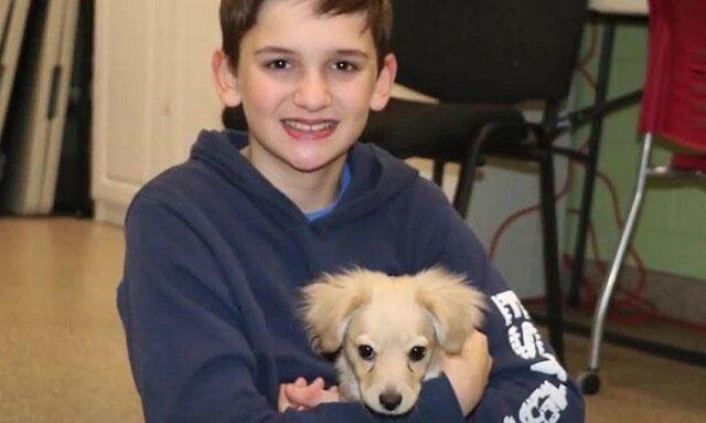 Ten szczeniak nie miał szans na pełne, aktywne życie, ale 12-letni chłopiec wpadł na pewien pomysł