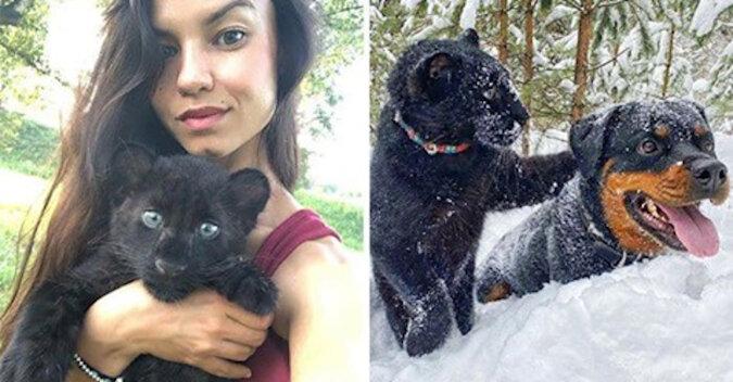 Osierocona pantera zaprzyjaźniła się z rottweilerem i nauczyła się żyć w zaśnieżonej Syberii