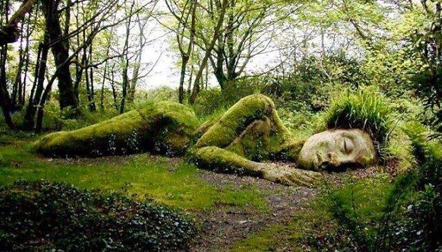 Oszałamiająca rzeźba, która zmienia swój wygląd w zależności od pory roku
