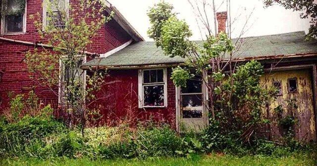 Fotografka znalazła opuszczony dom w lesie. Gdy otworzyła drzwi, przeżyła zadziwienie swojego życia
