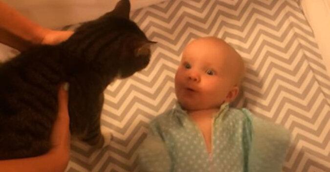 Niesamowite szczęście: reakcja dziecka na kota dotknęła Sieć. Wideo