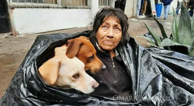 """""""Wielkie serce"""": bezdomna odmówiła opuszczenia ulicy, aby nie porzucić psów"""