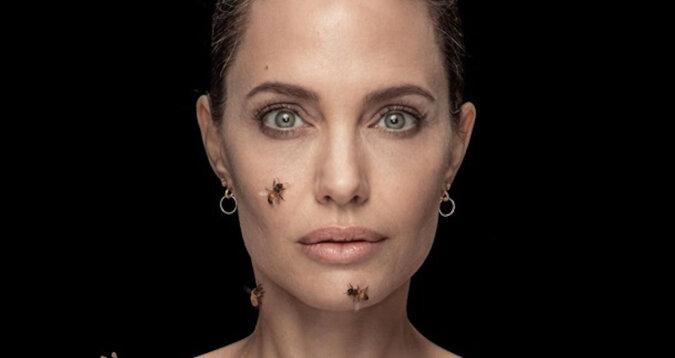 Niebezpieczna sesja zdjęciowa: Angelina Jolie pozowała z rojem pszczół, aby zwrócić uwagę na problem ich zniknięcia
