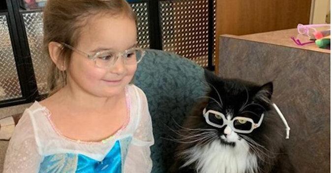 Kot Truffle uczy dzieci nie wstydzić się okularów