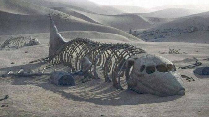 Samoloty starożytnej cywilizacji, które zdumiewały naukowców