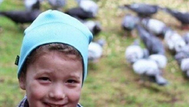Dziewczynka codziennie dokarmiała ptaki, w końcu zaczęły jej się odwdzięczać